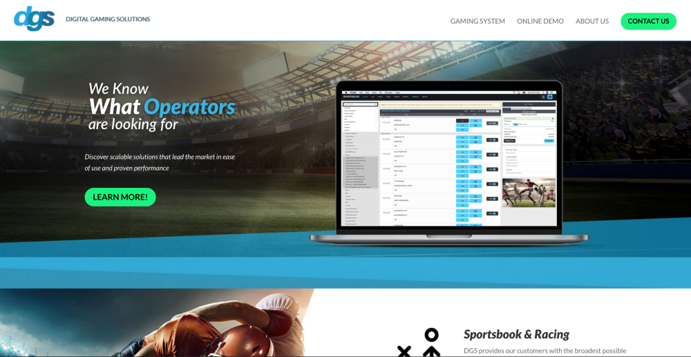 DGS Sports Betting Software Review