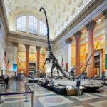 미국 자연사 박물관